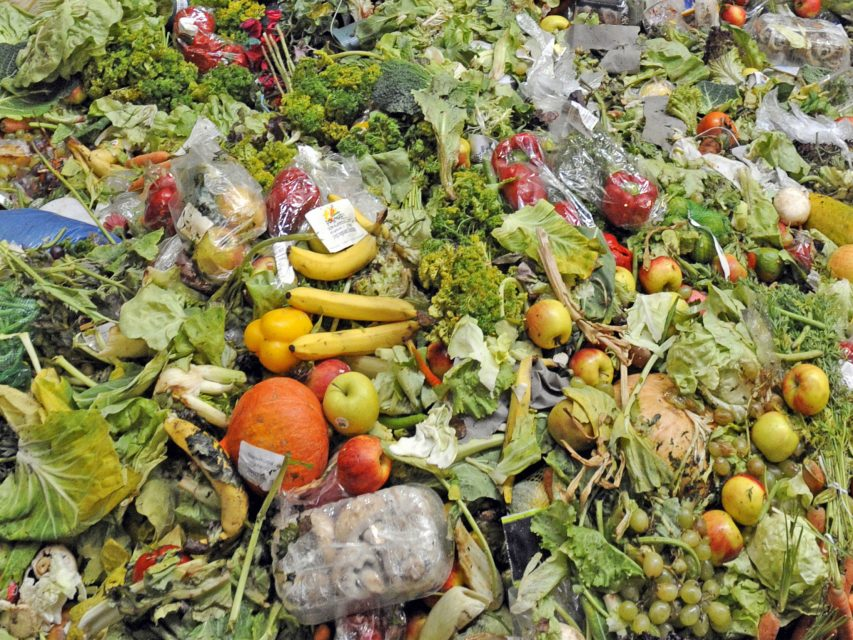 Albert kompostuje nevyužité potraviny