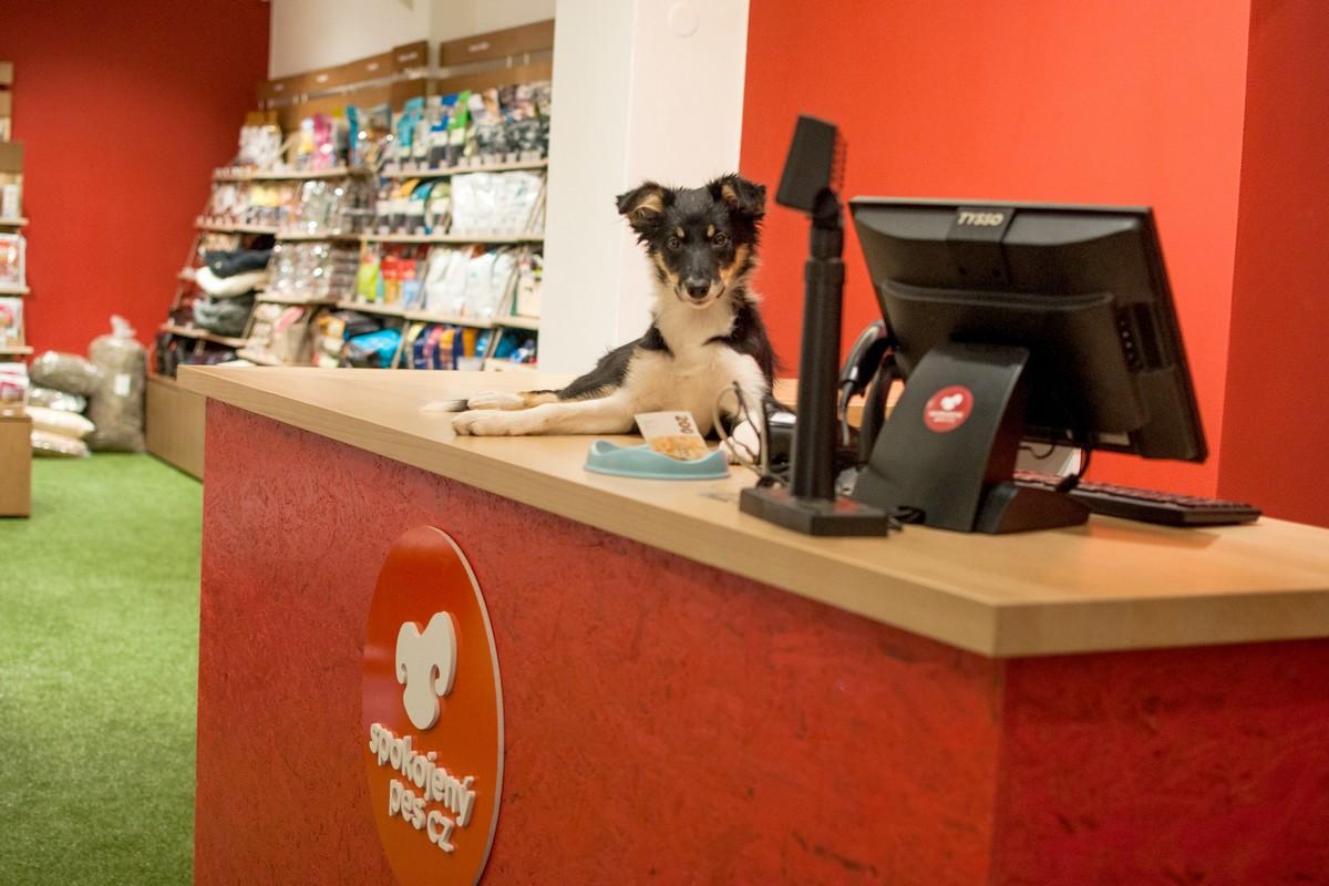 Nová prodejna e-shopu Spokojený pes