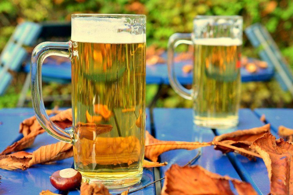 Pivovary na podzim uvedou speciály na svatého Martina, Václava a u prvního chmele
