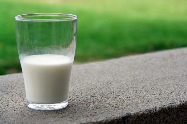 Češi a mléčné výrobky: u mléka vede Tatra, u dalších produktů Madeta